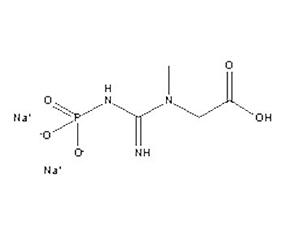 Disodium Creatine Phosphate
